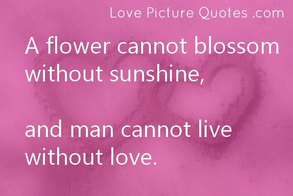 ... Without Sunshine, And Man Cannot Live Without Love ~ Love Quote Love